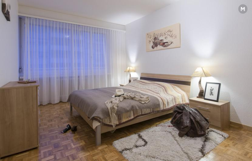 cozy and functional furnished apartments - Geneva Champel - 43