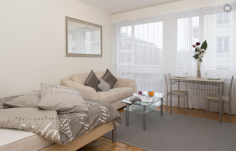cozy and functional furnished apartments - Geneva Champel - 39