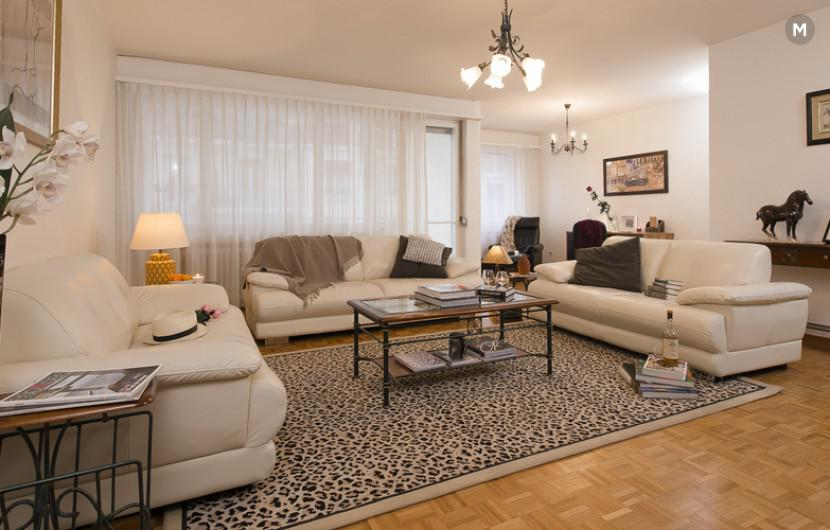 cozy and functional furnished apartments - Geneva Champel - 45