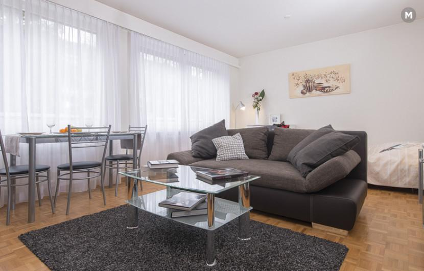cozy and functional furnished apartments - Geneva Champel - 1