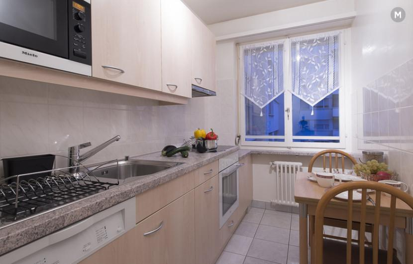 cozy and functional furnished apartments - Geneva Champel - 15