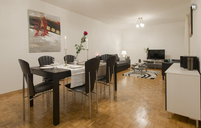 cozy and functional furnished apartments - Geneva Champel - 19