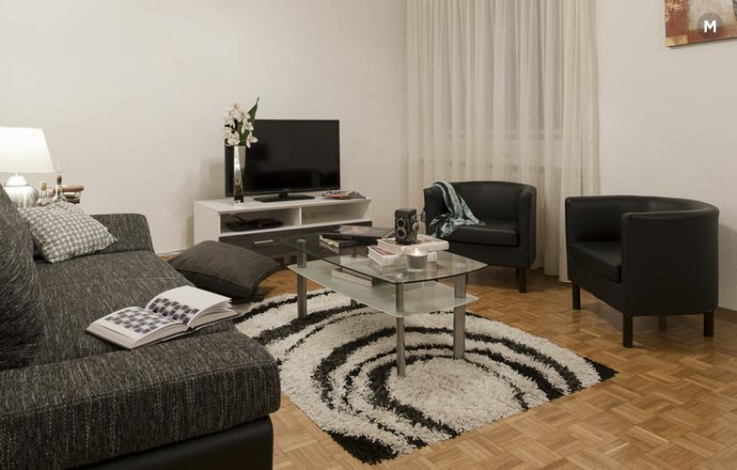 cozy and functional furnished apartments - Geneva Champel - 17