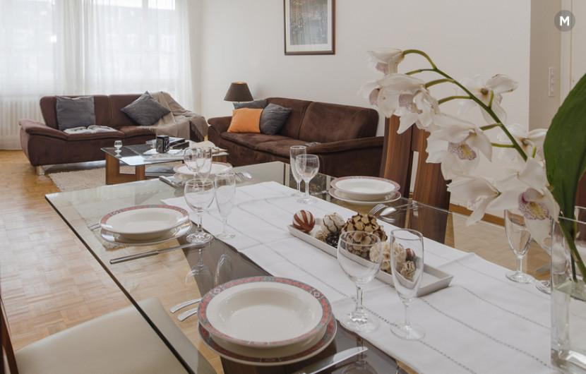 cozy and functional furnished apartments - Geneva Champel - 23