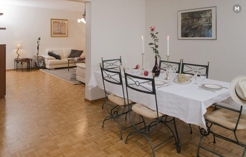 cozy and functional furnished apartments - Geneva Champel - 31