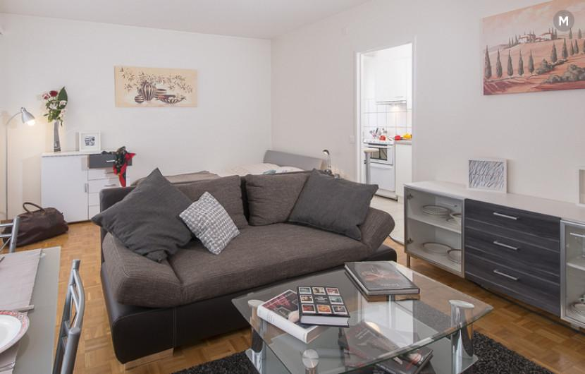 cozy and functional furnished apartments - Geneva Champel - 5