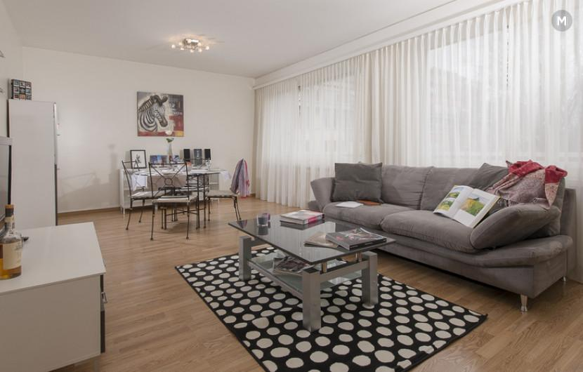 cozy and functional furnished apartments - Geneva Champel - 13