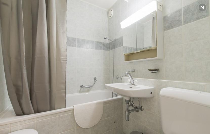 cozy and functional furnished apartments - Geneva Champel - 20