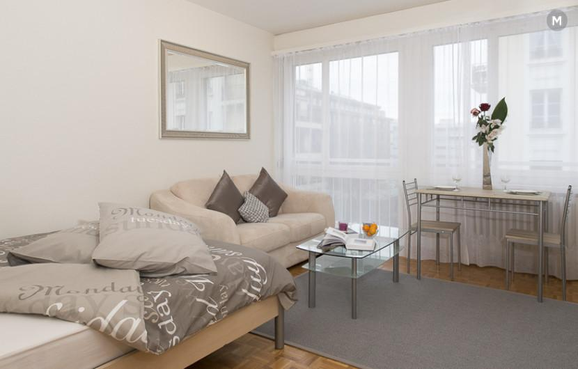 cozy and functional furnished apartments - Geneva Champel - 34