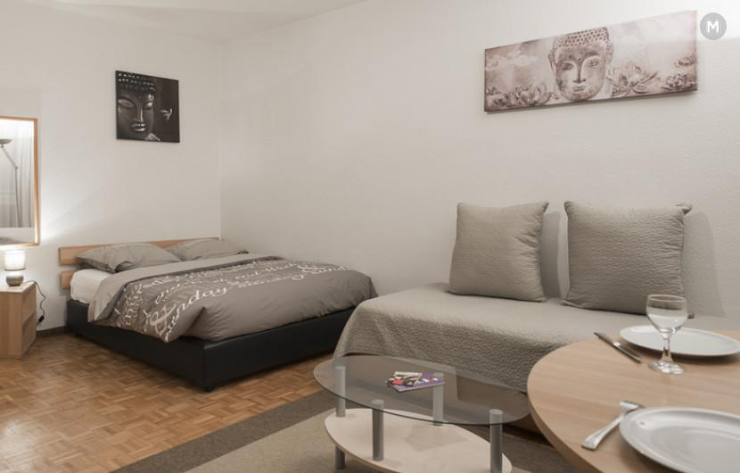 cozy and functional furnished apartments - Geneva Champel - 30