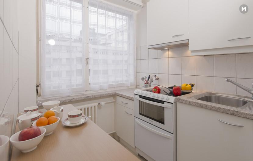 cozy and functional furnished apartments - Geneva Champel - 7