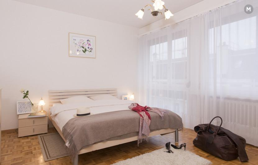 cozy and functional furnished apartments - Geneva Champel - 2