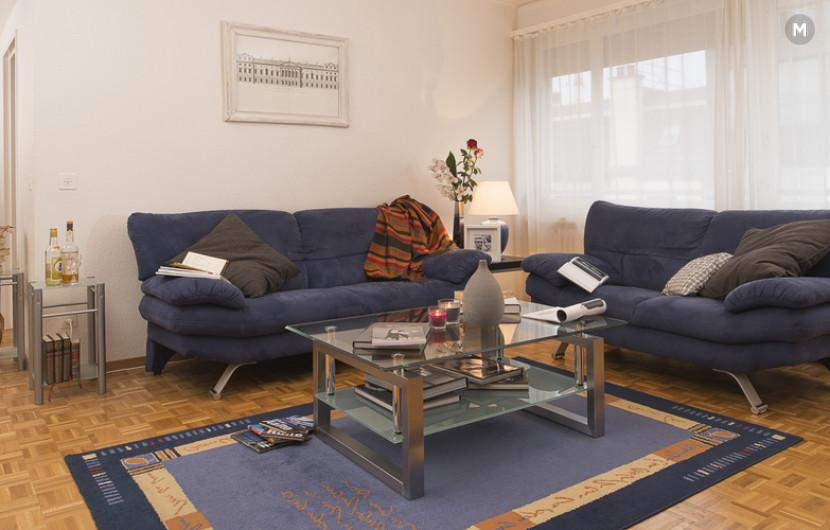 cozy and functional furnished apartments - Geneva Champel - 9
