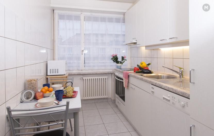 cozy and functional furnished apartments - Geneva Champel - 3