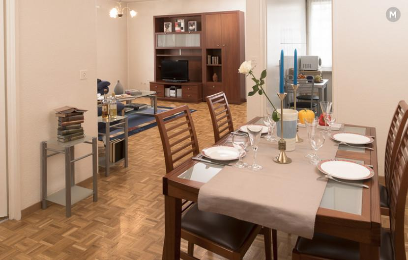 cozy and functional furnished apartments - Geneva Champel - 11