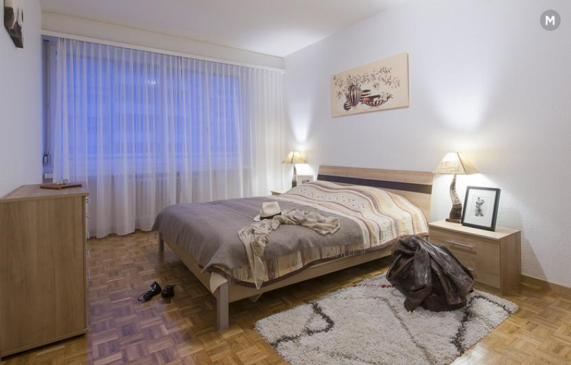 cozy and functional furnished apartments - Geneva Champel - 6