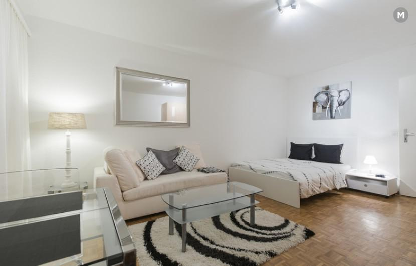 cozy and functional furnished apartments - Geneva Champel - 38
