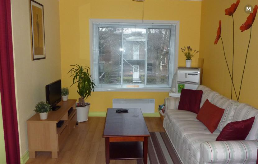 Flat 65m² 1 bedroom - Montreal Southwest - 1