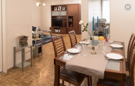 cozy and functional furnished apartments - Geneva Champel
