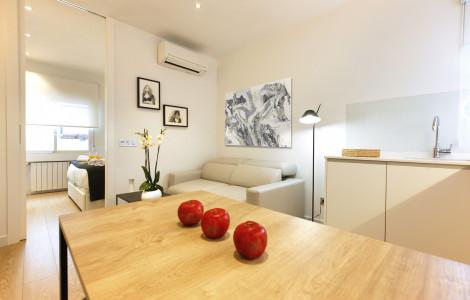 Appartement 45m² 1 chambre - Madrid - 1