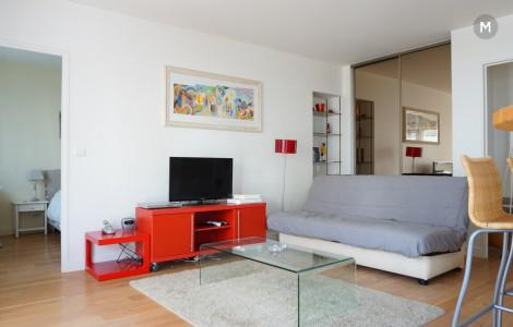 Appartement 46m² 1 chambre - Paris 15e Arrondissement